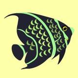 Angelfish ryba czarna wektorowa ilustracja Obraz Royalty Free