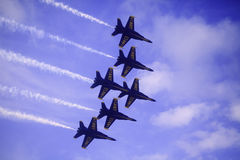 Angeli blu a Kaneohe Airshow immagini stock