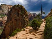 Angeli che atterrano traccia Zion National Park fotografie stock