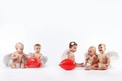 Angelic babies Stock Image
