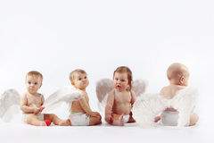 Angelic babies. Group of cute valentine angel babies sitting on light studio background Stock Images