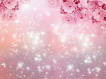 Angelic background. With pink roses, stars and copy space Stock Photography