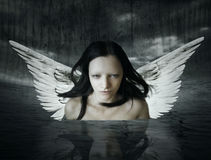 Angelic being. That comes out of the water in a setting dark background royalty free stock images