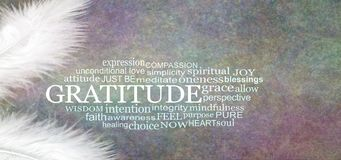 Angelic GRATITUDE Word Cloud Rustic Banner. Two white feathers with a GRATITUDE word cloud between against a dark stone effect multicoloured rustic grunge royalty free stock photos
