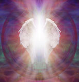 Angelic Guardian. Symbolic white Angel wings with a burst of white light between on an intricate ethereal sacred multicolored pattern background Royalty Free Stock Images