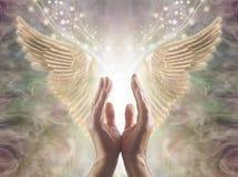 Angelic Guidance procurando dos reinos divinos imagens de stock