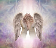 Angelic helping hands. Cupped hands with finely detailed Angel wings on either side, on an intricate ethereal patterned background with a central light shaft and Royalty Free Stock Photos