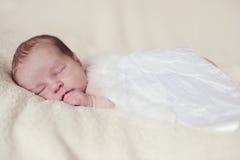 Angelic newborn royalty free stock image
