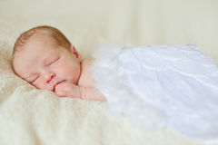 Angelic newborn Royalty Free Stock Photos