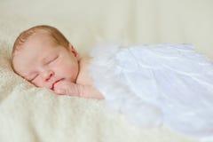 Angelic newborn. Sleeping angelic newborn with feather wings royalty free stock photos