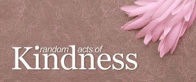 Angelic Random Acts av bakgrund för vänlighetrosa färgfjäder royaltyfri illustrationer