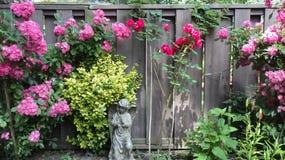 Angelic Rose Garden Arkivbild