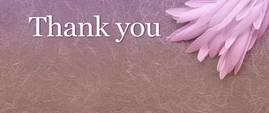 Angelic Thank You Pink Feather header Background stock image