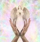 Angelic Vision Royalty Free Stock Photos