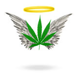 Angelic Weed. Marijuana Leaf with wings and halo Stock Images