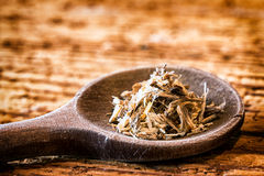 Angelica. Incense on an old kitchen spoon - angelica stock photo