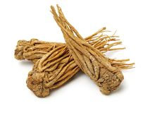 Angelica root. Used in chinese traditional herbal medicine, over white background. Radix angelicae sinensis stock image