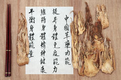 Angelica Root. Chinese herbal medicine with mandarin script calligraphy over rice paper and papyrus. Dang gui. Translation describes the functions to increase royalty free stock images