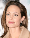 Angelina Jolie, ANGELINA JOLIE, 免版税库存图片