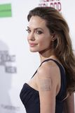 angelina jolie Obraz Royalty Free