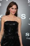 Angelina Jolie стоковая фотография rf