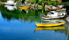 Angelmo, Puerto Montt Στοκ φωτογραφία με δικαίωμα ελεύθερης χρήσης