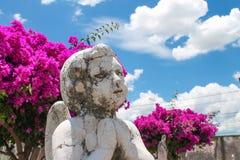 Angelo che prega in pietra tombale fotografia stock libera da diritti
