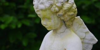 Angelo con l'ala rotta Fotografia Stock Libera da Diritti