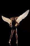 Angelo con le ali su fondo nero Fotografie Stock
