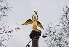 Angelo del monumento con i piccioni alla città krasnodar Fotografia Stock