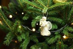 Angelo di Natale sul ramo dell'albero di Natale Fotografia Stock