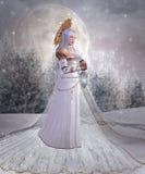Angelo di neve Fotografia Stock