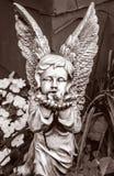 Angelo di pietra in bianco e nero Immagine Stock