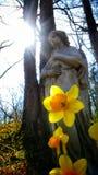 Angelo nel legno Fotografia Stock