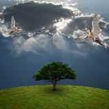 Angels above green tree. Dramatic clouds. Human elements were created with 3D software and are not from any actual human likenesses Royalty Free Stock Photo