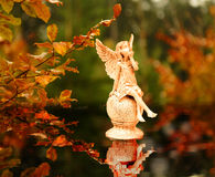 Angels in the autumn Stock Images