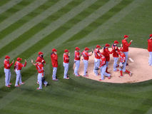 Angels players high five in infield after winning game Royalty Free Stock Images