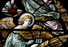 An angels in stained glass Stock Photography