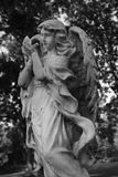 Angels. Statue black and white grave yard dusk Stock Photo