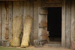 Angelsaksische deur royalty-vrije stock fotografie