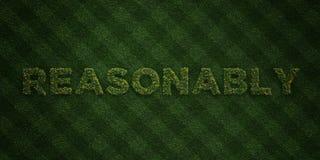 ANGEMESSEN - neue Grasbuchstaben mit Blumen und Löwenzahn - 3D übertrug freies Archivbild der Abgabe lizenzfreie abbildung