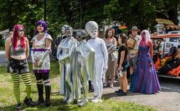 Angemessener Ausländer Pagent Kiefern-Bush UFO lizenzfreie stockfotos