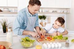 Angenäm fadermatlagning med hans son royaltyfria bilder