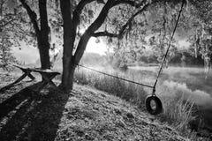 angenäm morgon Fotografering för Bildbyråer