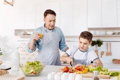 Angenäm pys som lär att laga mat royaltyfri foto