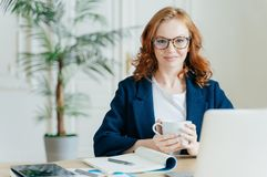 Angenehme schauende elegante weibliche Freiberuflerbucheinzelteile auf Netzspeicher, liest Nachrichten im Internet, schreibt Anme stockbild