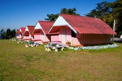 Angeordnete rosafarbene Häuser in einem Yard Lizenzfreies Stockbild