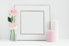 Angeredete Blumenphotographie des quadratischen Feld-Modells auf Lager Lizenzfreies Stockbild