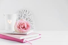 Angeredete Blumenphotographie des Wand-Modells auf Lager Stockfoto