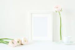 Angeredetes Modell mit weißem Rahmen und rosa ranunculos Lizenzfreie Stockfotos